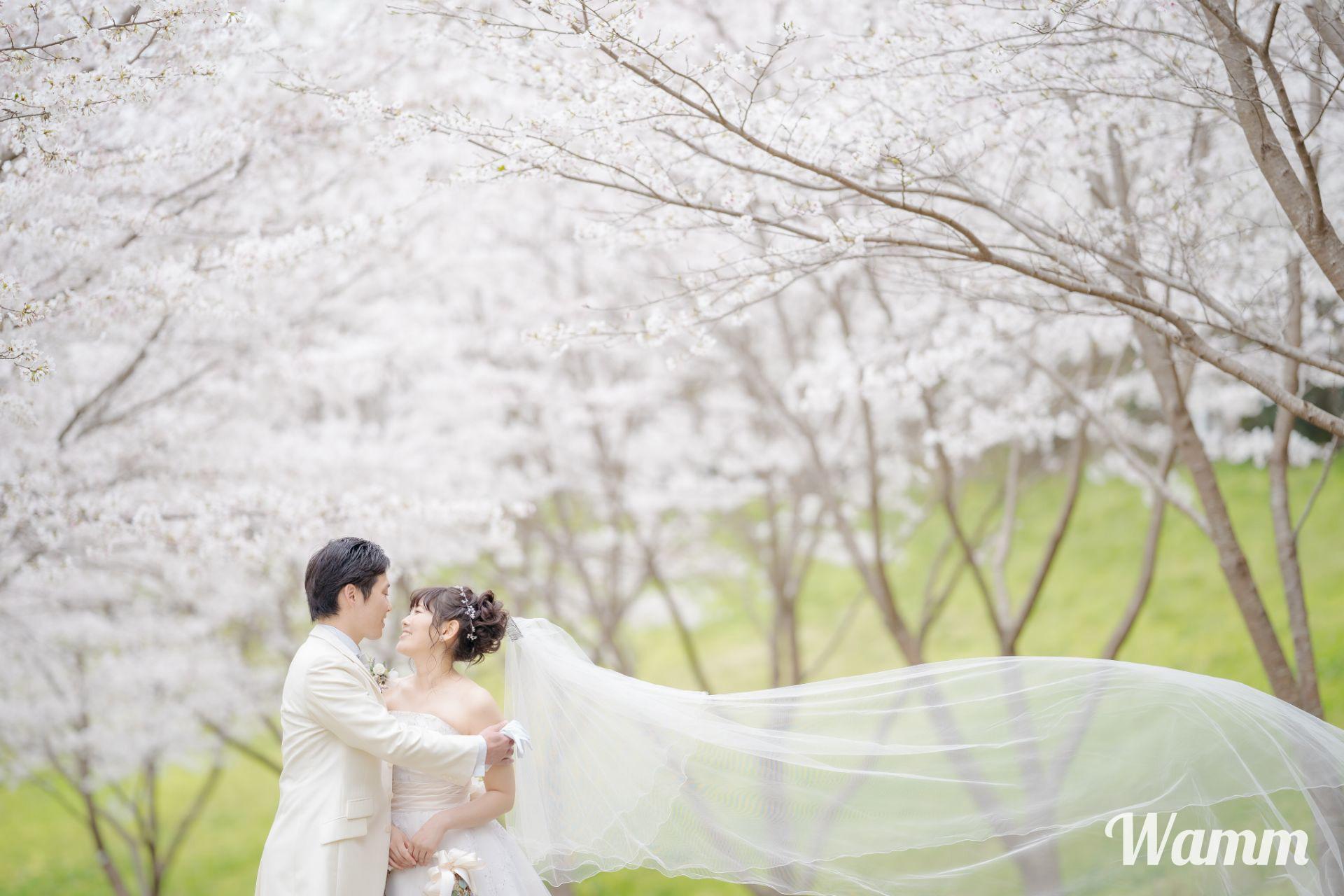 【浜松・都田総合公園】春はさくらにツツジ、夏は新緑、秋は紅葉 一年中撮影できる芝生の公園も魅力!