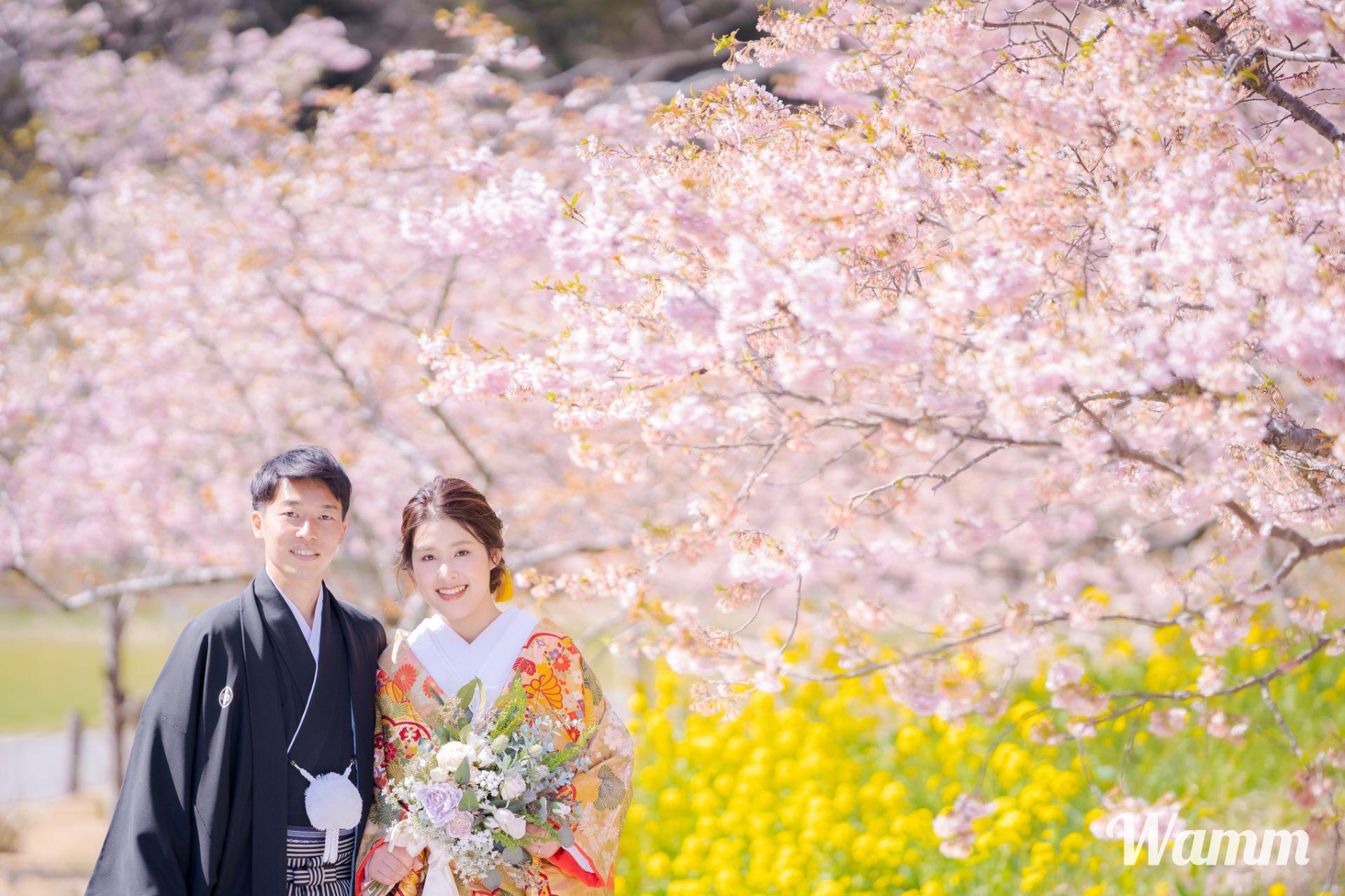 【浜松・はままつフラワーパーク】お手入れが完璧に行き届いた花の楽園 限定期間にご注意を!