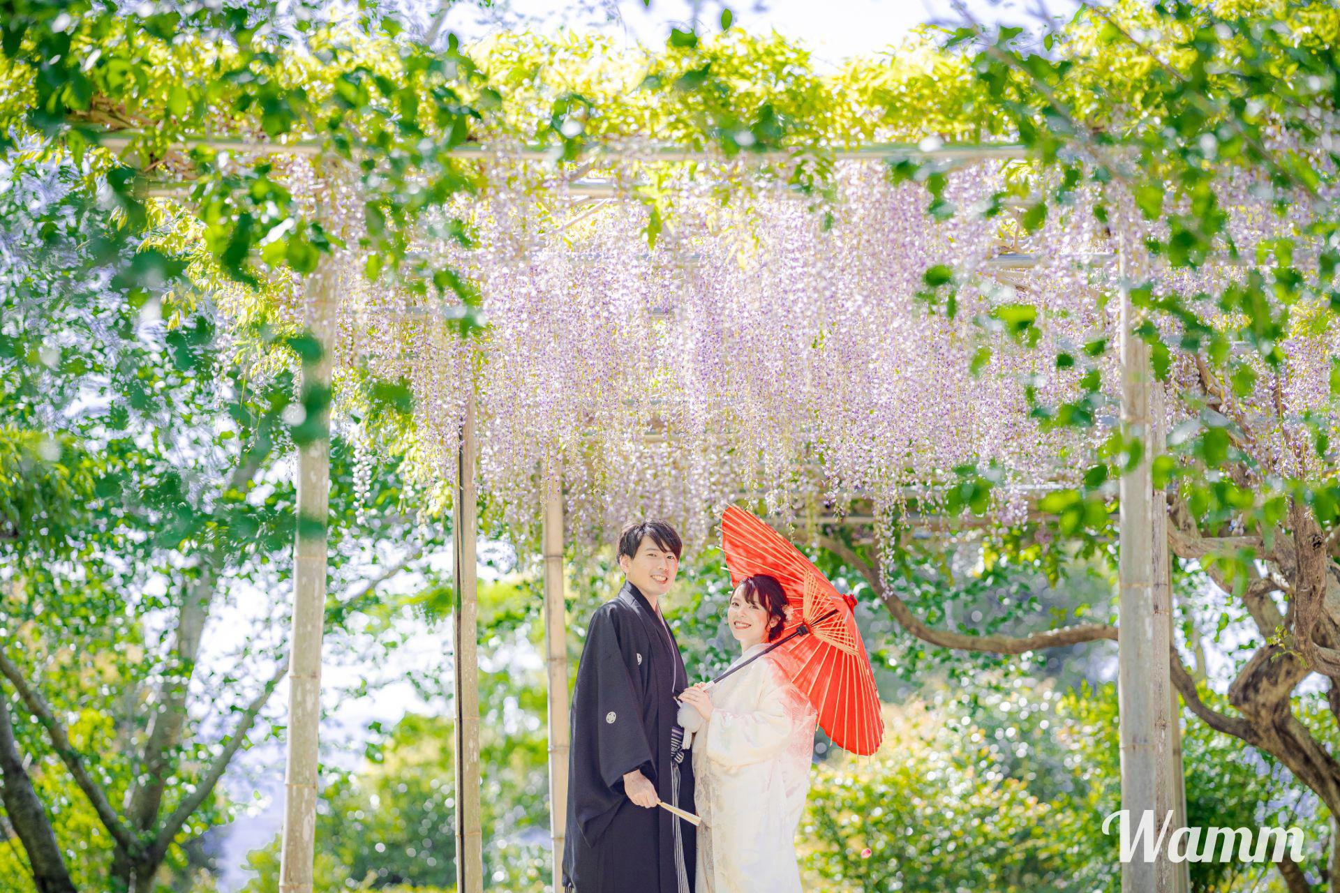 【浜松・初山宝林寺】車で5分の美しく壮大な寺院 桜・藤の花が咲く春は特におすすめ!