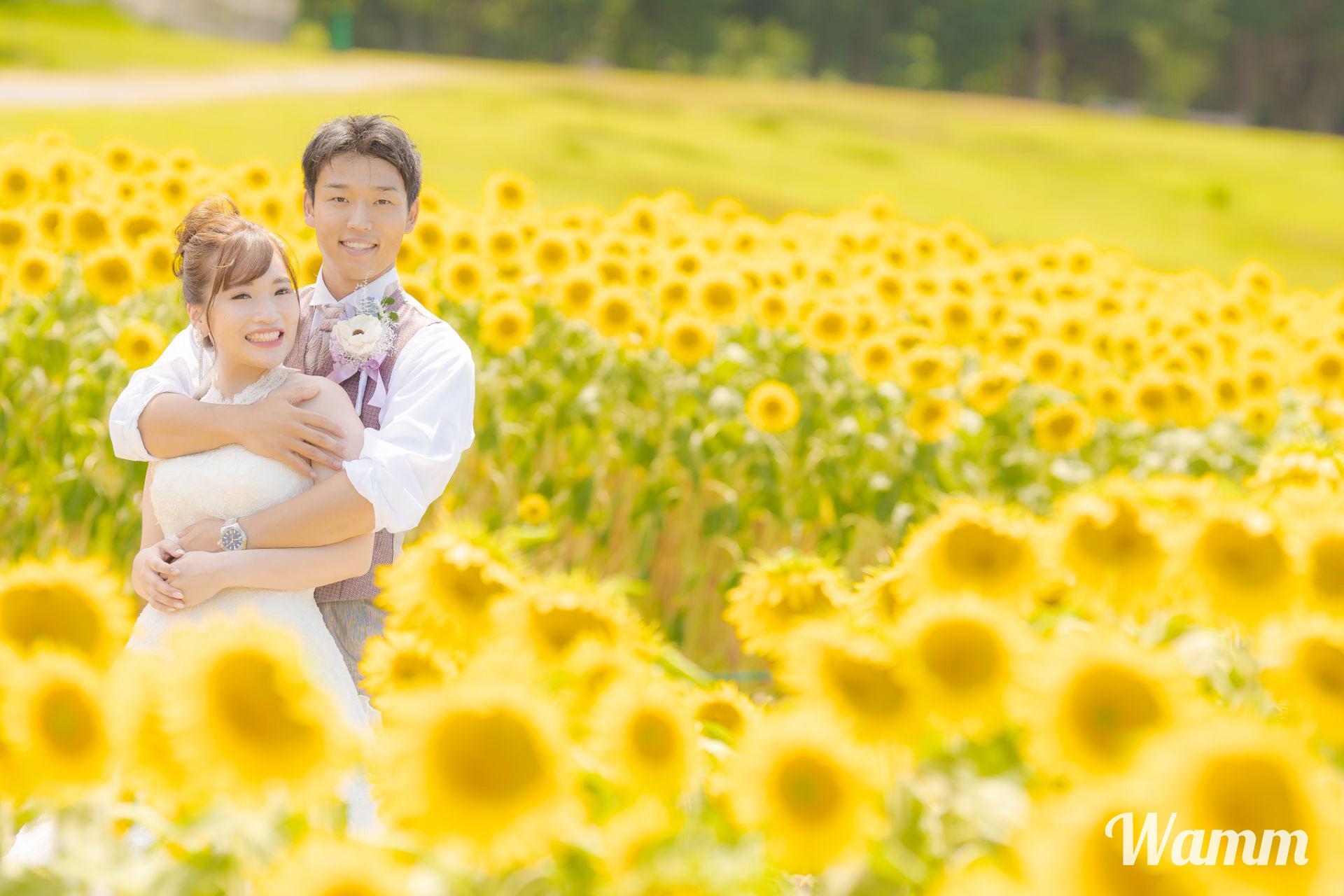 【浜松 浜名湖ガーデンパーク】春はネモフィラ 夏はひまわり 秋はコスモス